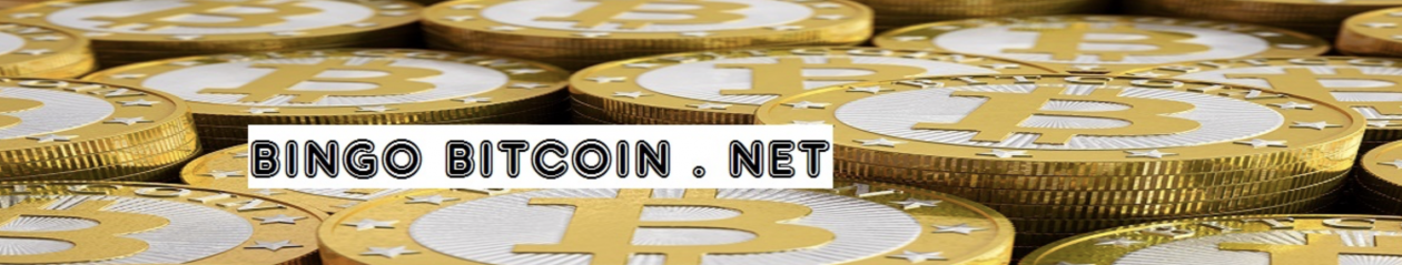 Bingo Bitcoin .net